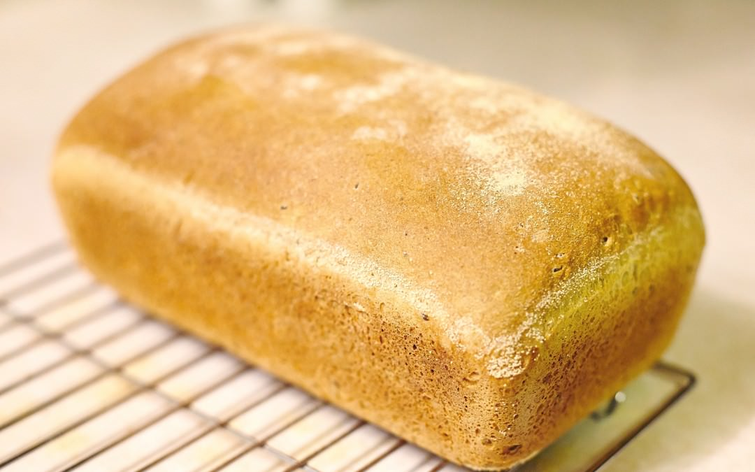 Simple Homemade Whole Wheat Bread