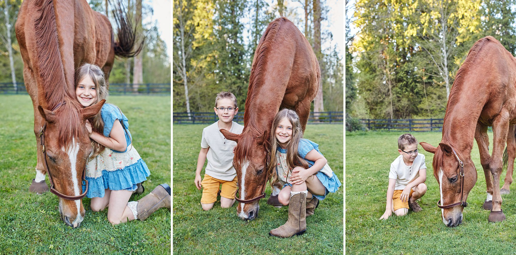 Kids And Horse
