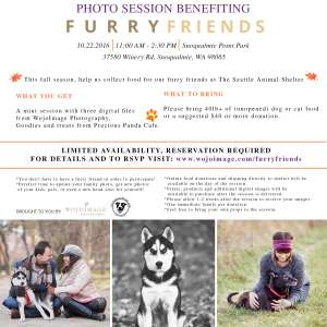 Seattle Pet Photography Furry Friends Mini Session Flyer