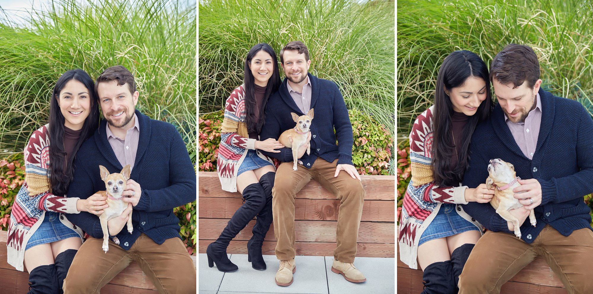 Seattle Lifestyle Pet Photographer