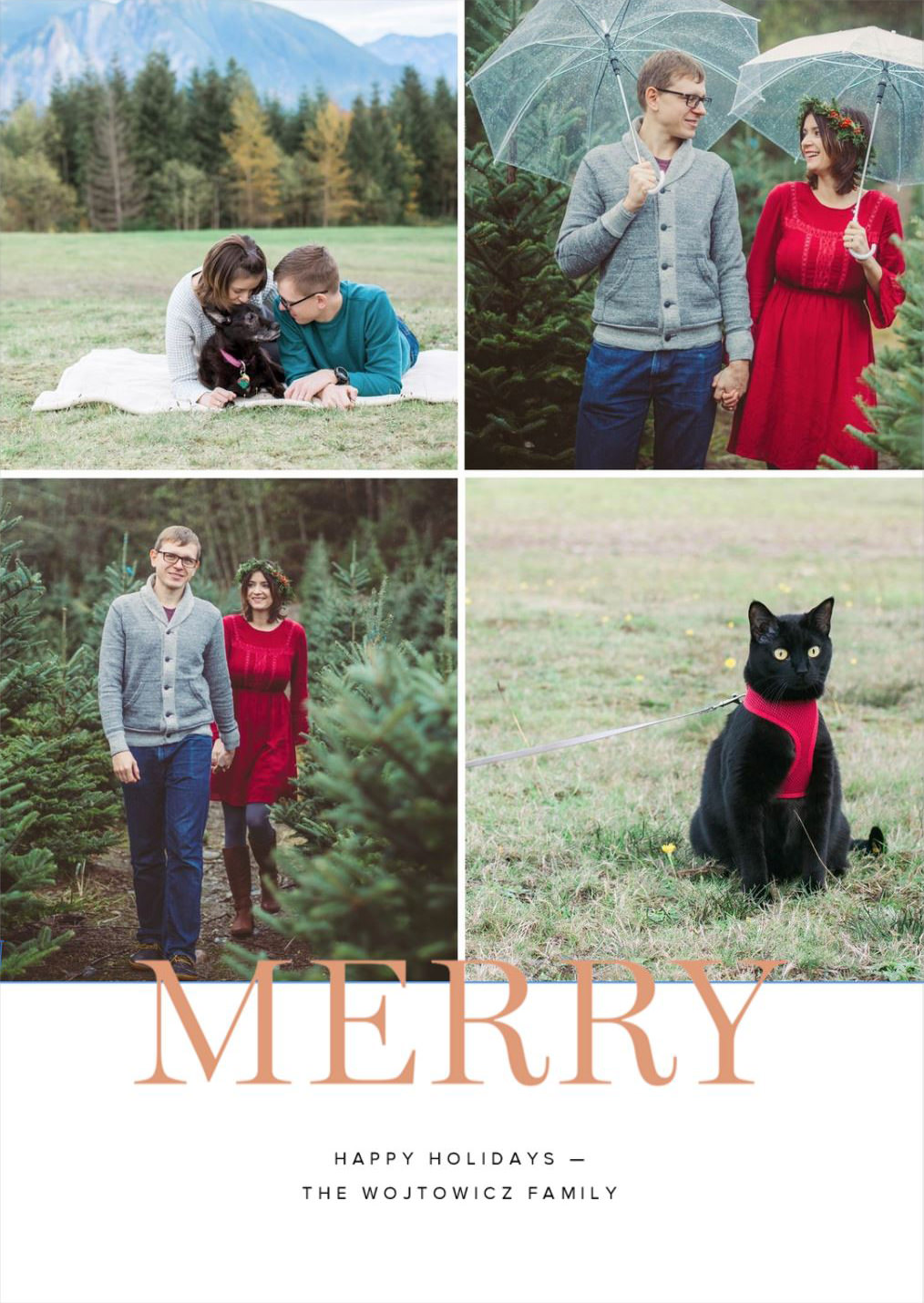 Seattle Family and Pet Lifestyle Photographer