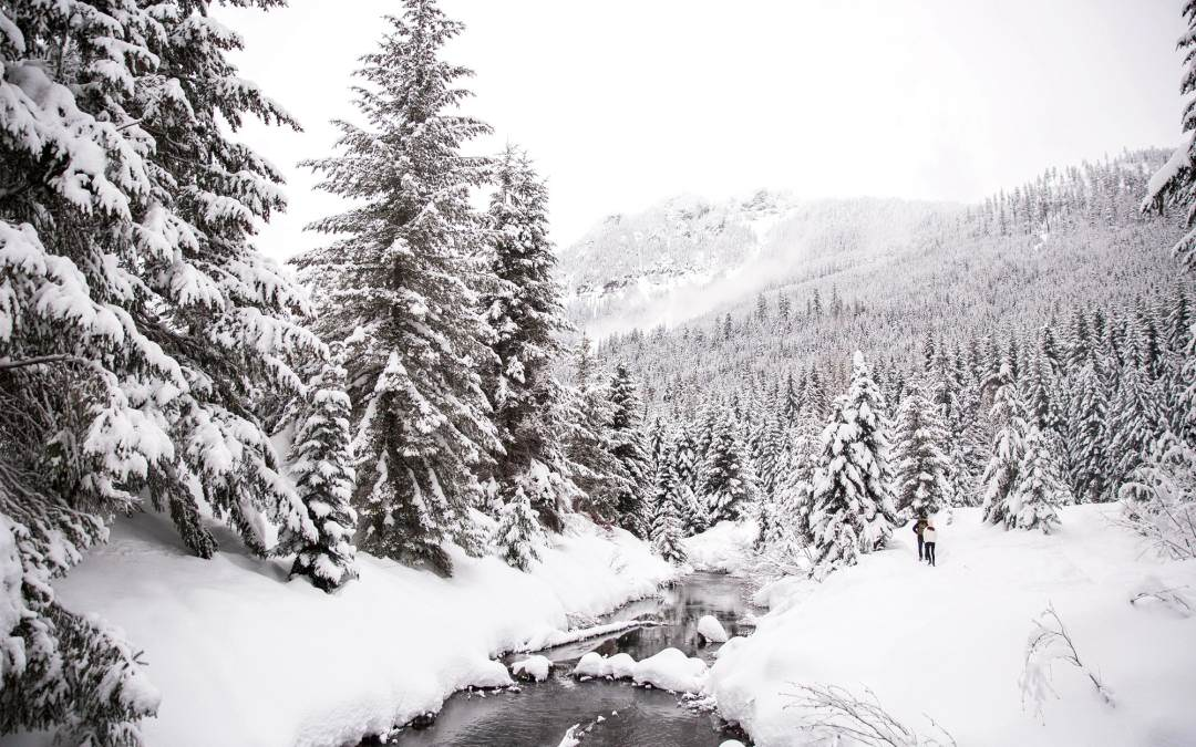PNW Adventures-Snowshoeing At Gold Creek Pond
