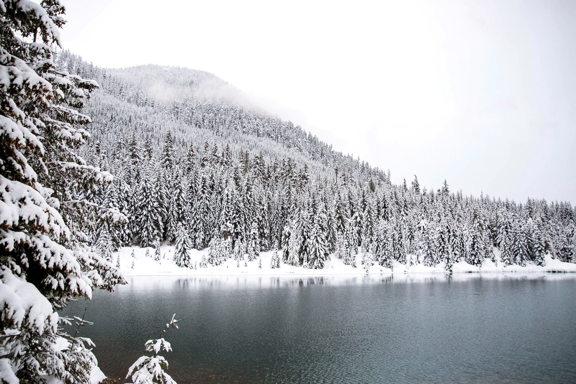Winter Wonderland And Lake