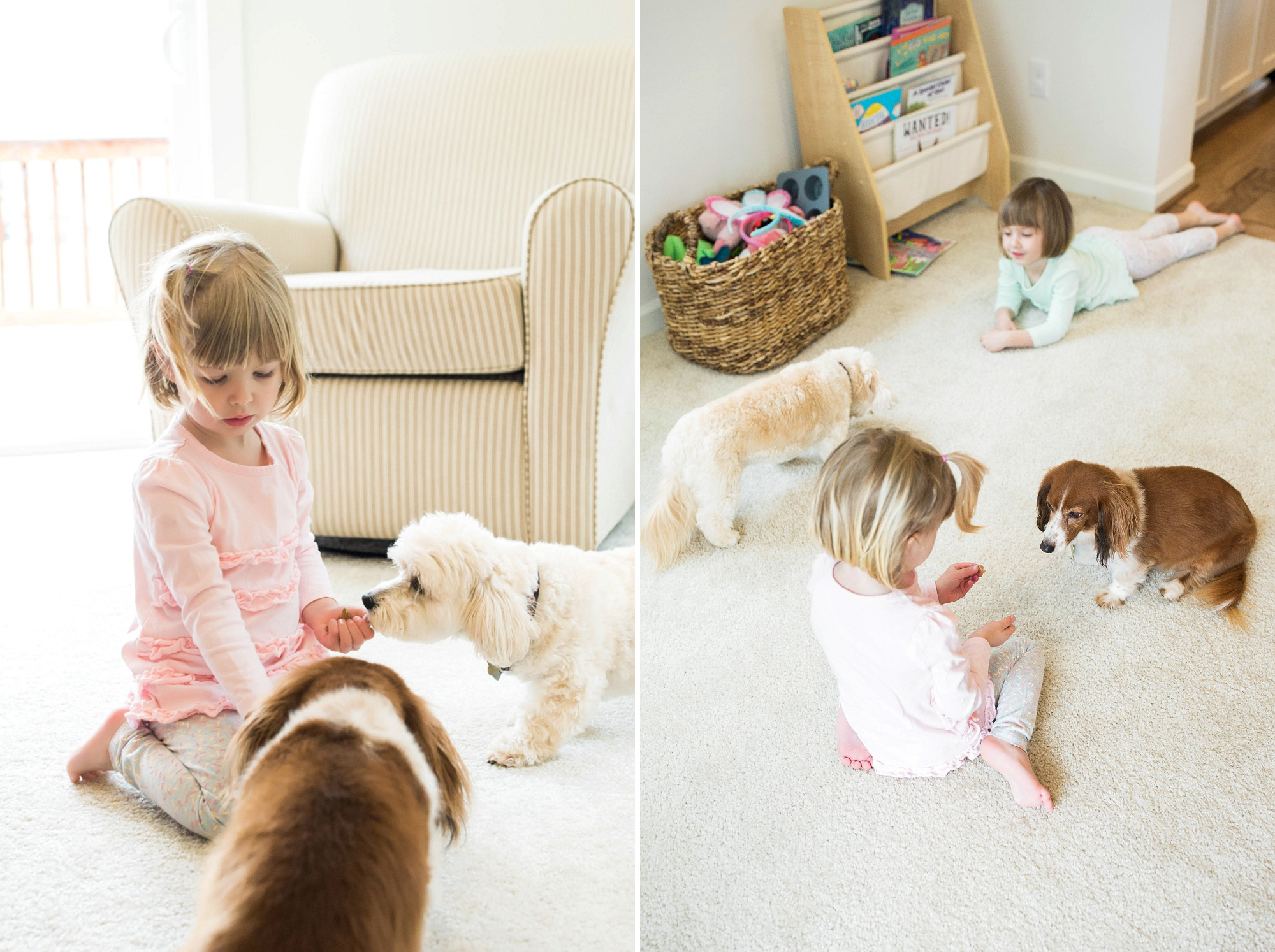 little girls feeding their dogs