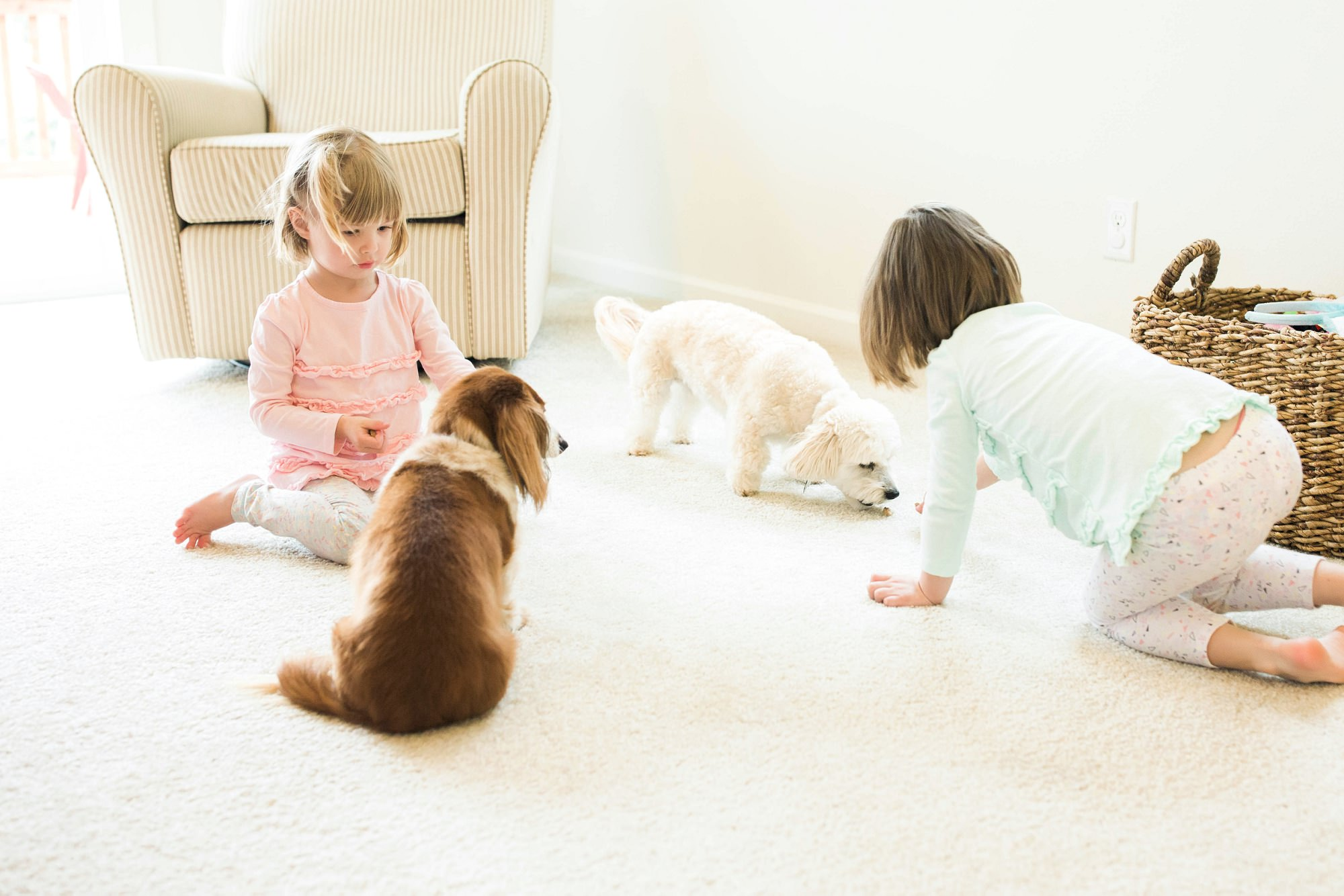 little girls playing with their dogs