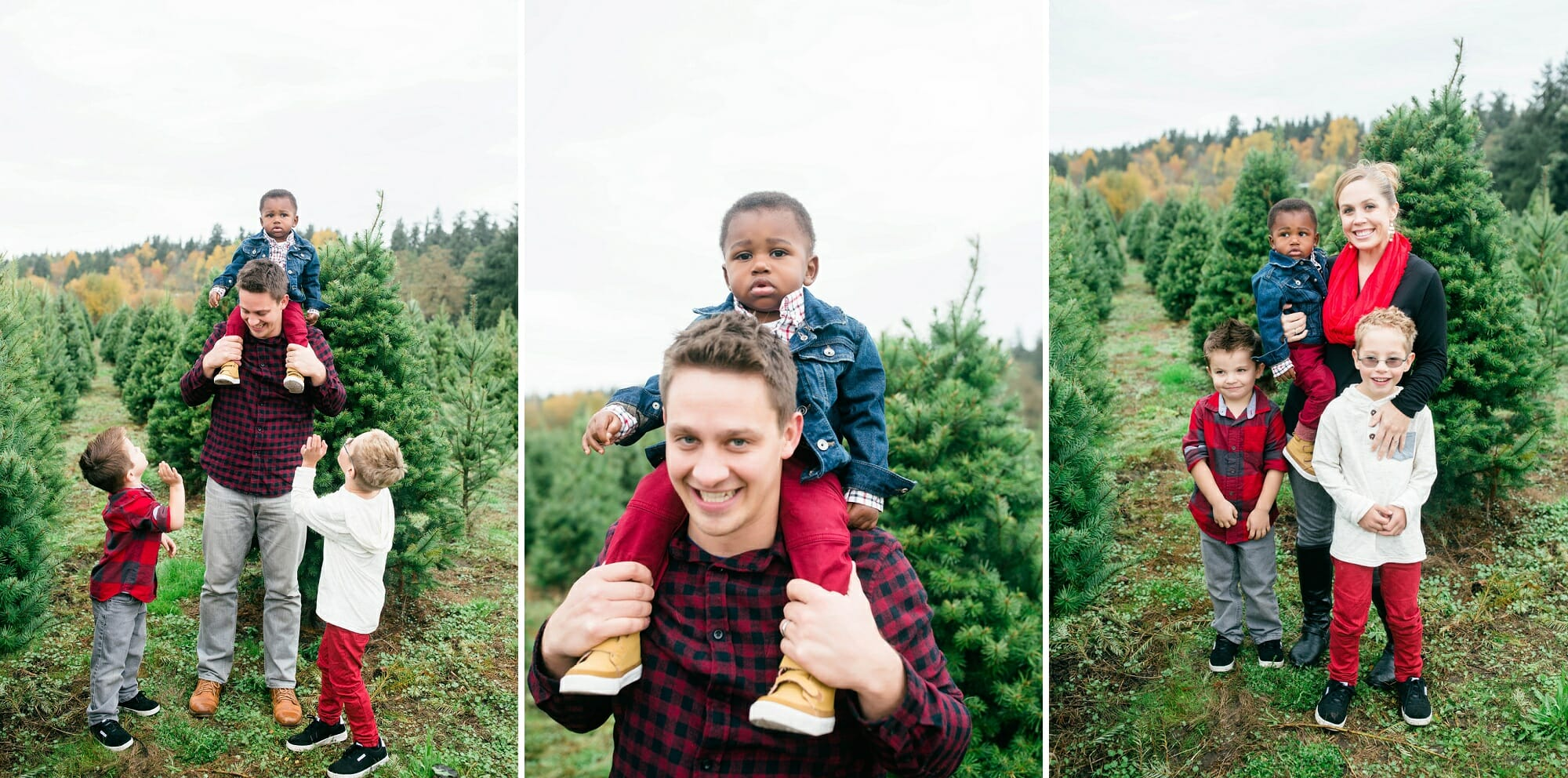 McMurtrey's Red-Wood Christmas Tree Farm