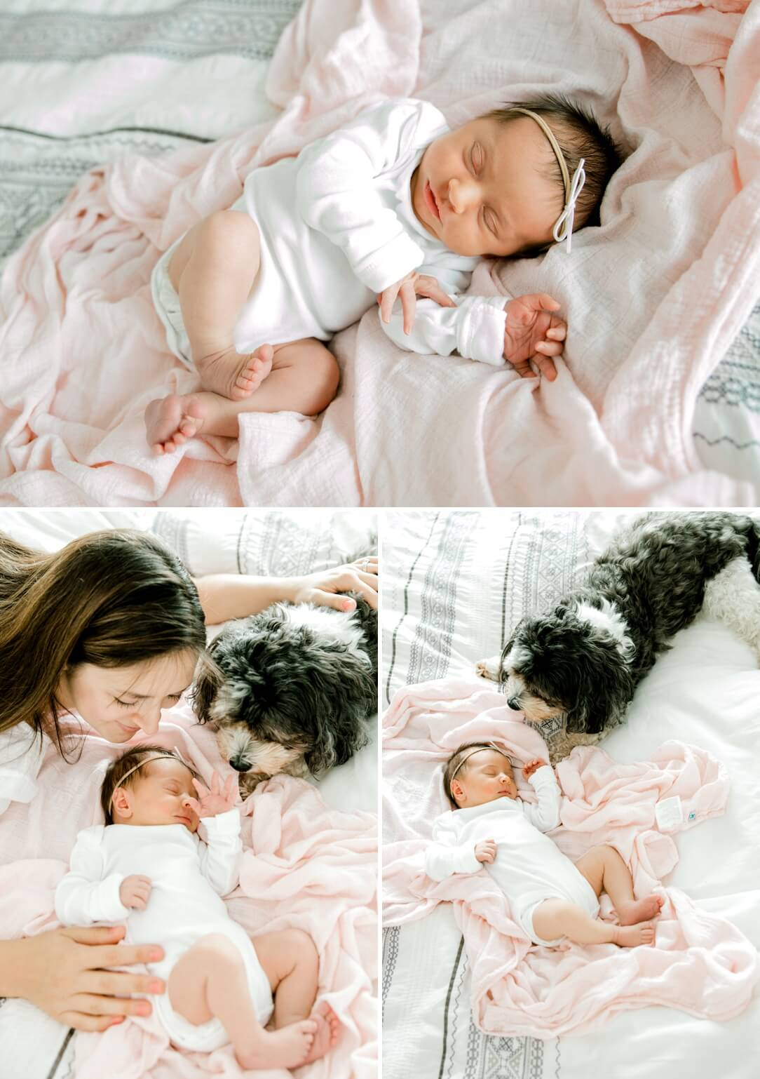 newborn baby girl laying on a bed with her mom and a dog