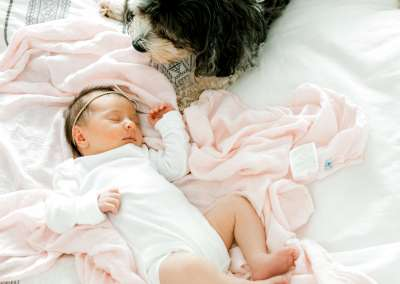 newborn baby laying on a bed with a dog