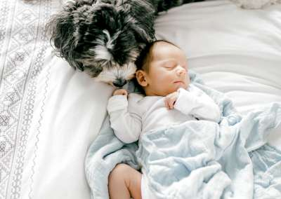 newborn baby laying on bed with a dog